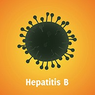 Hepatitis B microbe