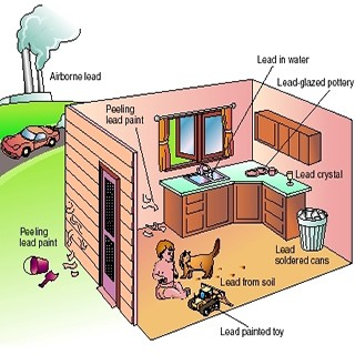Sources of lead in and around the home